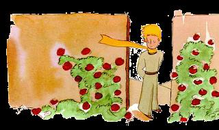 Petit Prince e as rosas